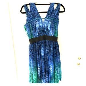 Blue/Green Cheetah Flowy Summer Dress